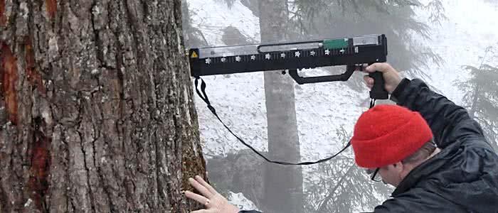 rinntech resistograph® winter
