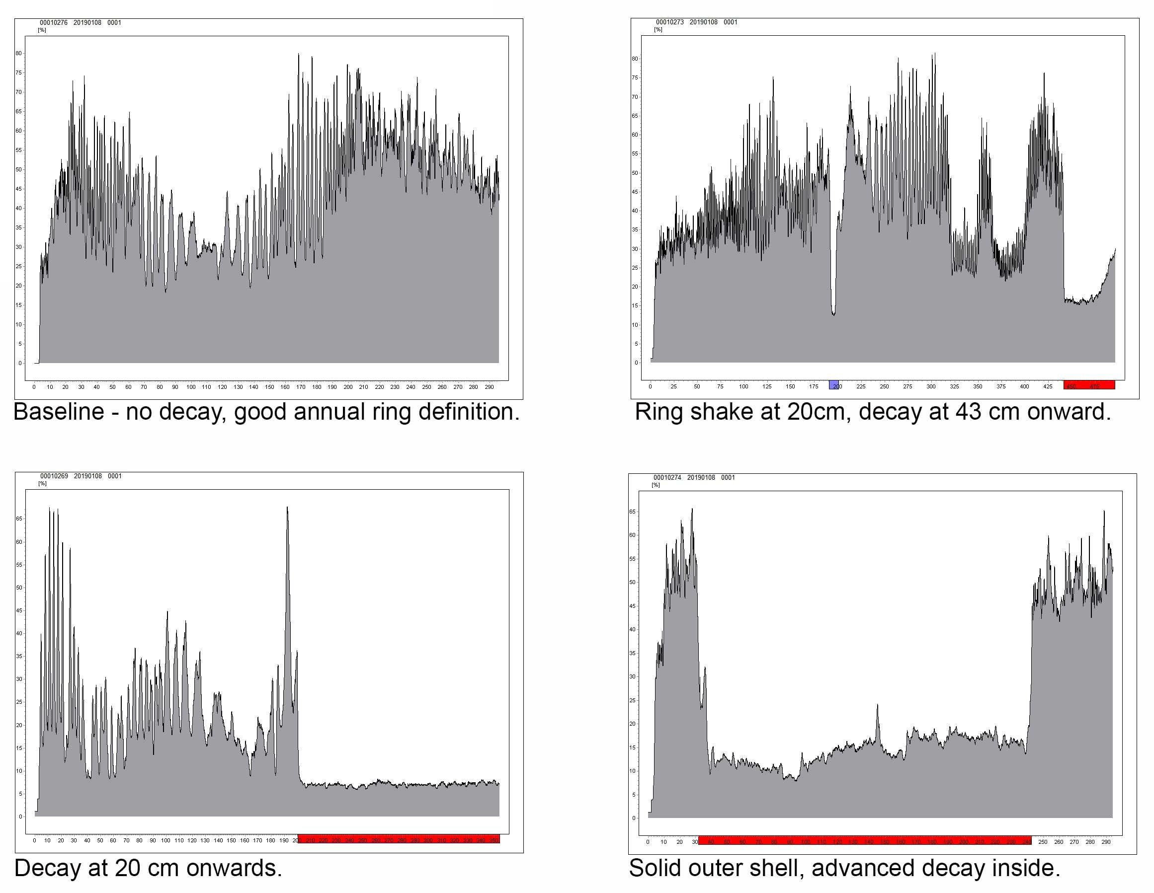Rinntech Resistograph Graphs