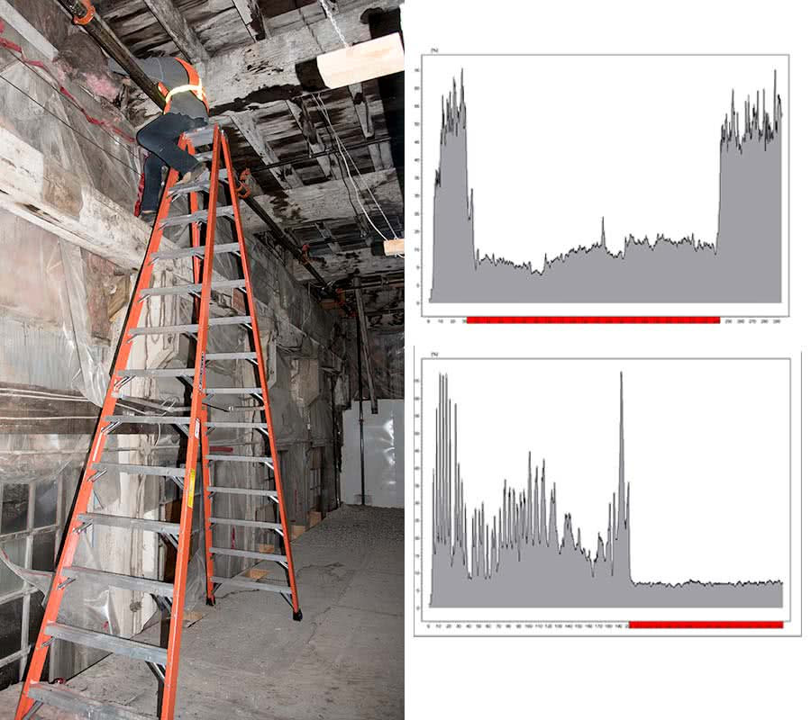 Rinntech Resistograph In Timber Structures